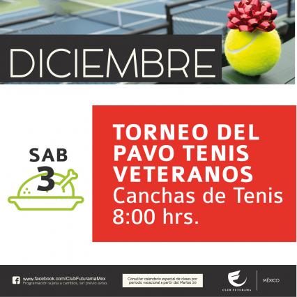 Torneo de Tenis del pavo veteranos